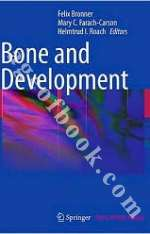 Bone and Development - Felix Bronner